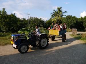 Sortie en tracteur le jour du Pongal, la fête des moissons